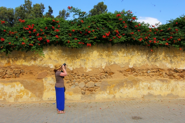 Snapping a pictures in the gardens outside Old Fes