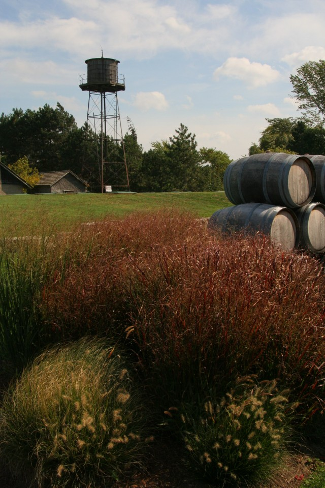 I love how each winery has its own personality--some had beautiful areas of outdoor seating.